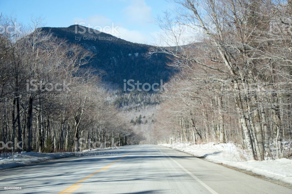 wooded road in the mountains stock photo
