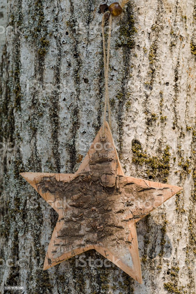 Wooden and rustic shape heart wooden hang up, on the bark of the tree - foto stock