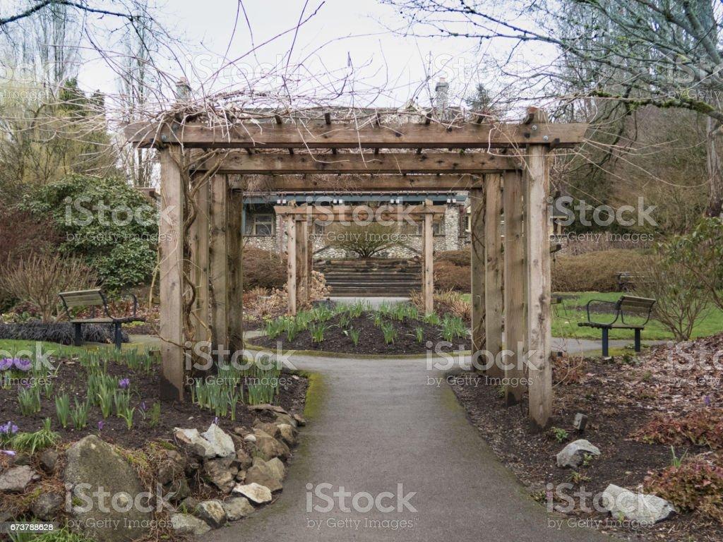 Deer Lake Park, ahşap Milli royalty-free stock photo