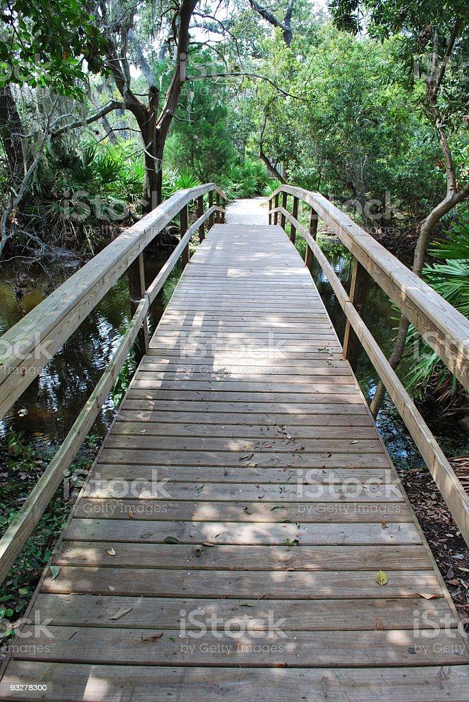 Wooden Arch Boardwalk Bridge in a Shady Woodland Forest stock photo