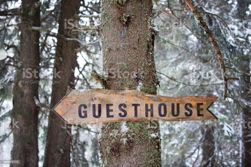 Sinal de seta de madeira de uma árvore em uma floresta - foto de acervo