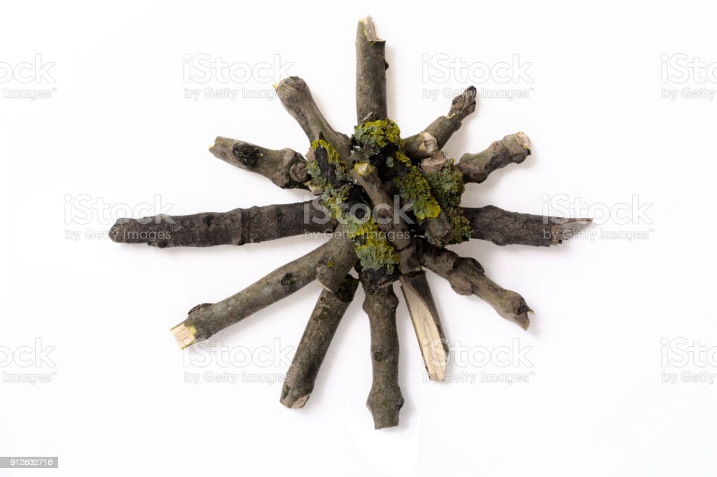 Wooden Asterix made with in forest found snapped branches stock photo