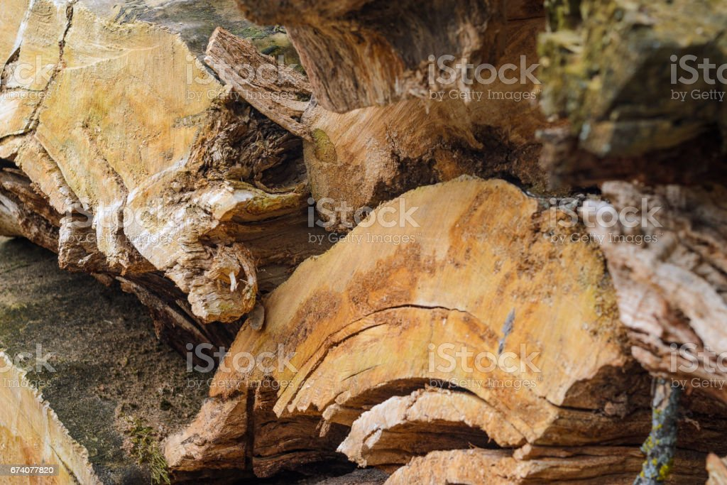Wooden background. Firewood stacked stock photo
