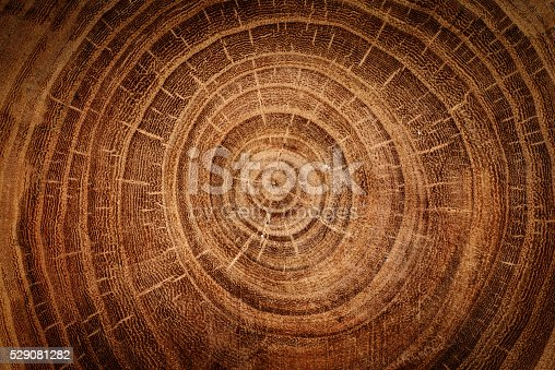 istock wooden background 529081282