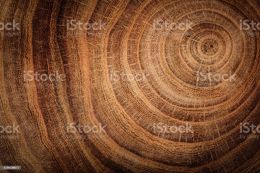 wooden background​​​ foto