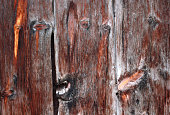 istock Wooden Background 944651650