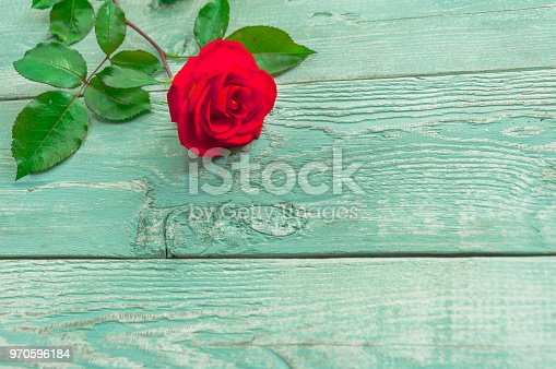 istock Wooden background with a single red rose 970596184