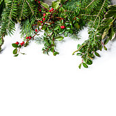 Wooden Background with Branches