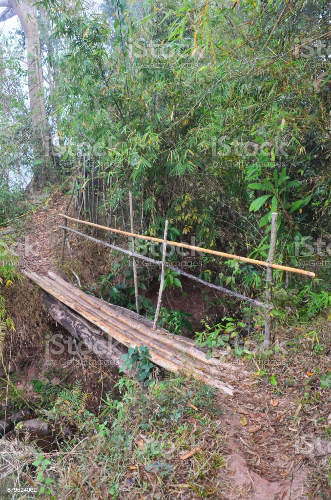 Wooden bamboo bridge in forest for people crossing small stream stock photo