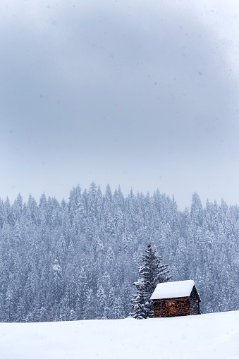 Wooden barn on Romanian mountains at winter with a lot of snow