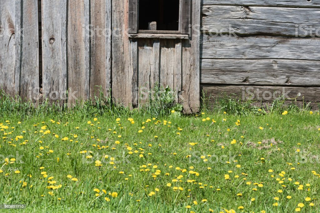 Wooden barn wall background and Grass - Royalty-free Abandoned Stock Photo