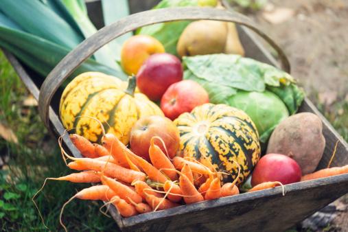 Wooden basket full of fresh, organic vegetables.