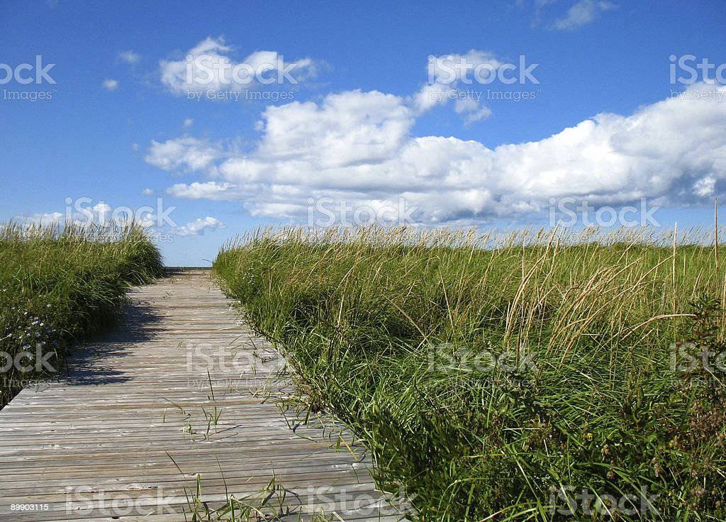Wooden beach boardwalk and sky royalty-free stock photo