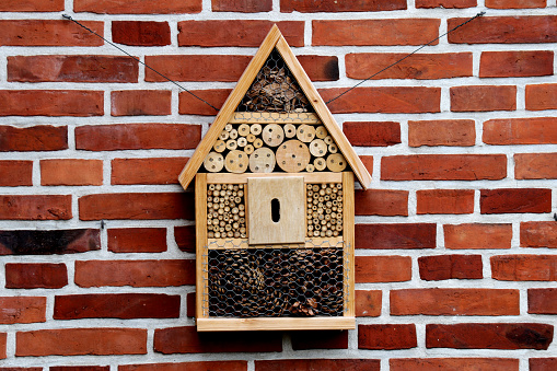 Wooden Bee House hanging on a brick wall - rural scene