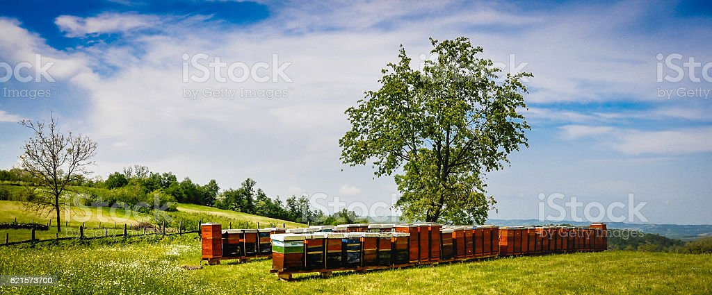 Wooden beehives at mountain photo libre de droits