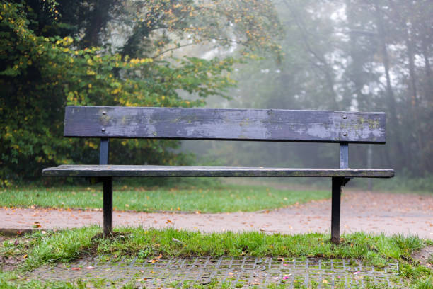 Wooden bench for taking break after hiking in park stock photo