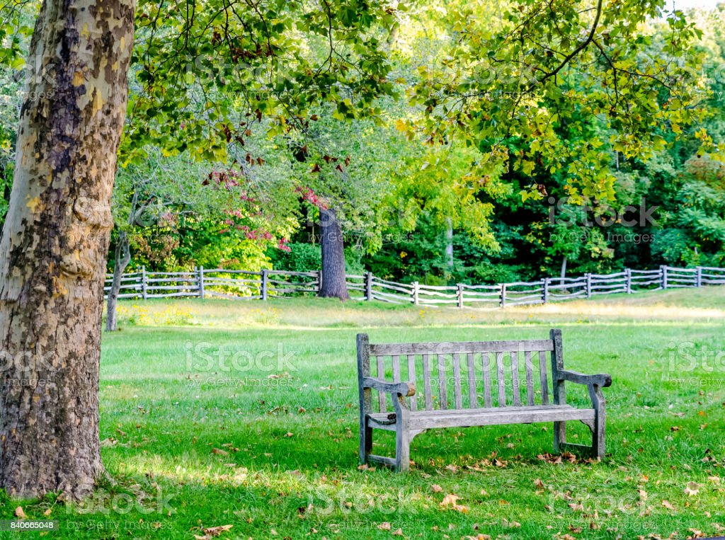 Wooden Bench in a Park stock photo