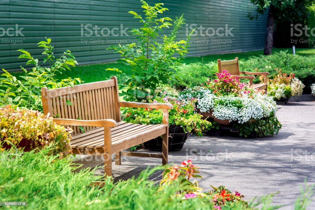 wooden bench in a park with flowers in flowerpots on asphalt near a...