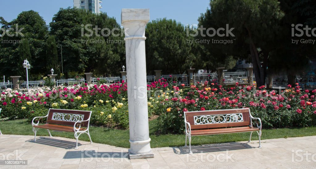 Wooden bench found in the middle of rose garden