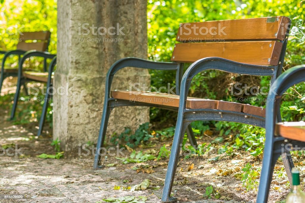 Wooden bench in the park. Rest area stock photo
