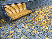 park in autumn. wooden bench on stone pavement with colorful bright fallen leaves