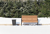 istock Wooden bench on the background of the forest in winter 1308447912