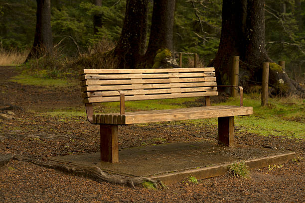 Wooden Bench stock photo