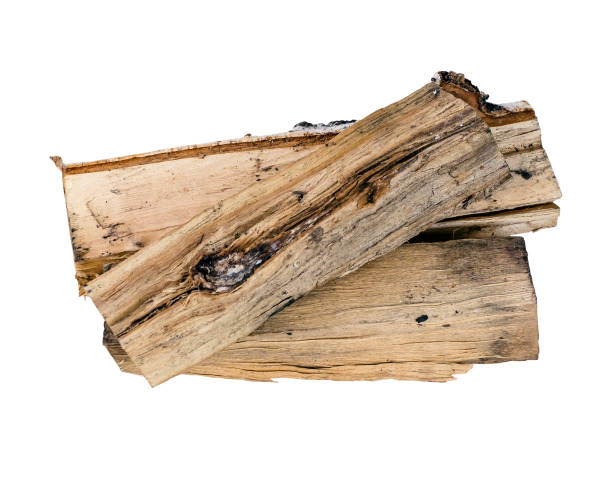 Wooden birch logs. Firewood isolated. Birch firewood isolated on white background. log stock pictures, royalty-free photos & images