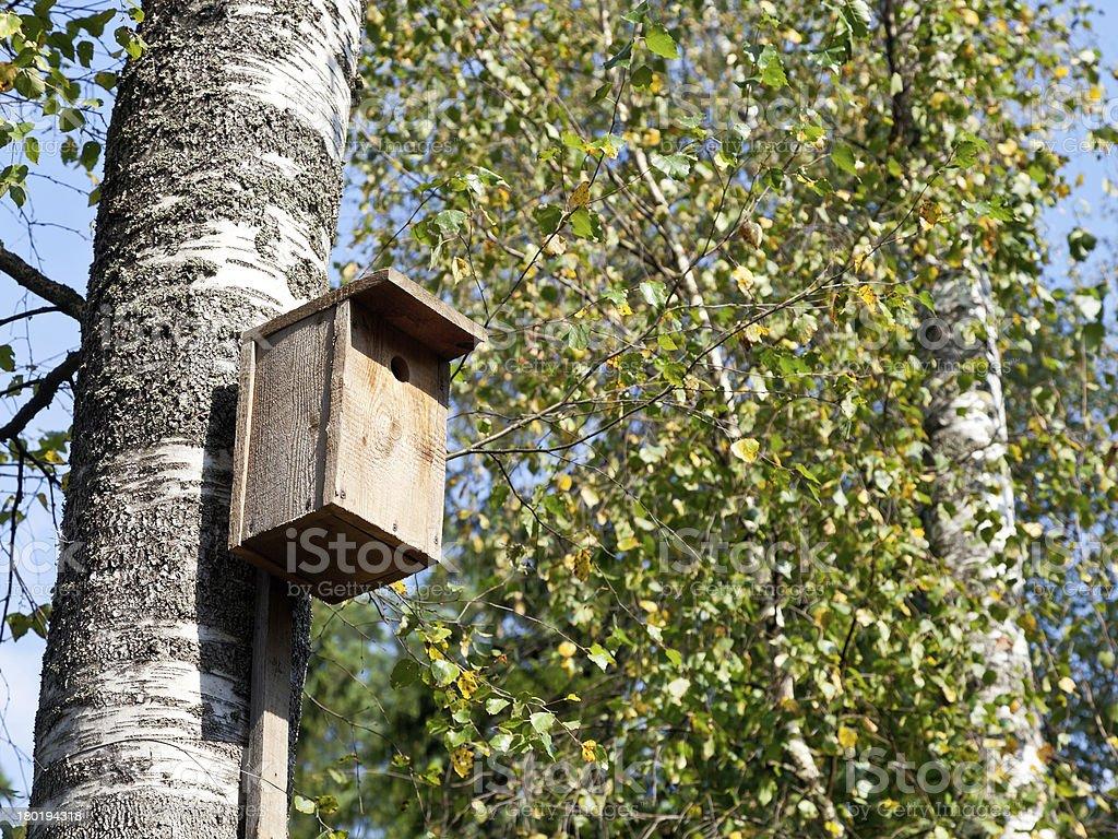 wooden birdhouse on birch royalty-free stock photo