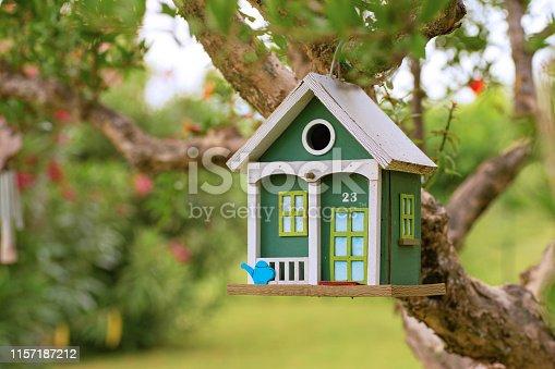 hang wooden birdhouse in the garden