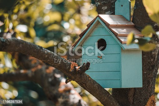 Wooden blue birdhouse on a apple tree in the farm park zone. Simple birdhouse design. Shelter for bird breeding, nesting box on a tree