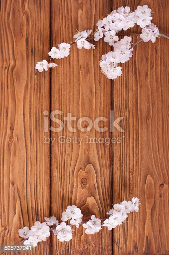 istock Wooden board framed by flowers of apricot 525737241