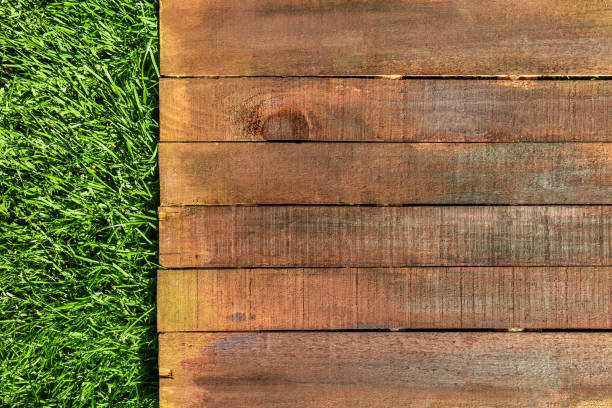 Wooden board on green grass, picnic related design template stock photo