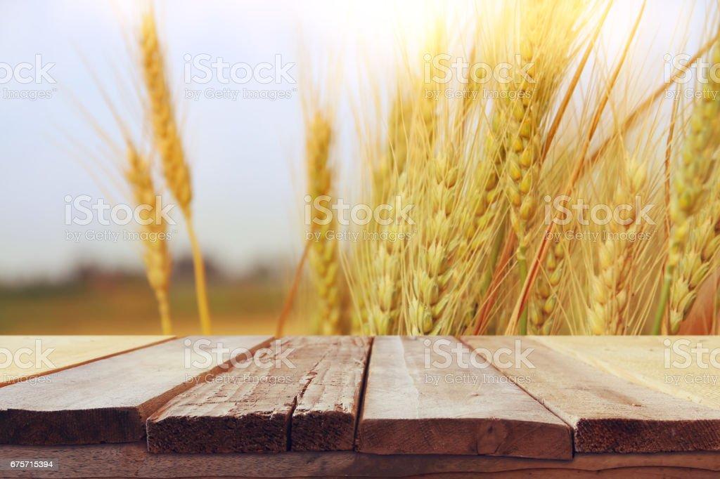 在麥田上夕陽光木板表 免版稅 stock photo