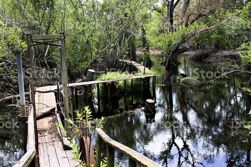 Wooden Boardwalk into the Swamp royalty-free stock photo