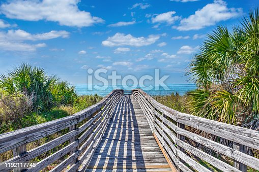 Wooden footpath to the beach surrounded by palm trees. Barrier island on Gulf Coast. Honeymoon Island State Park, Florida, USA.