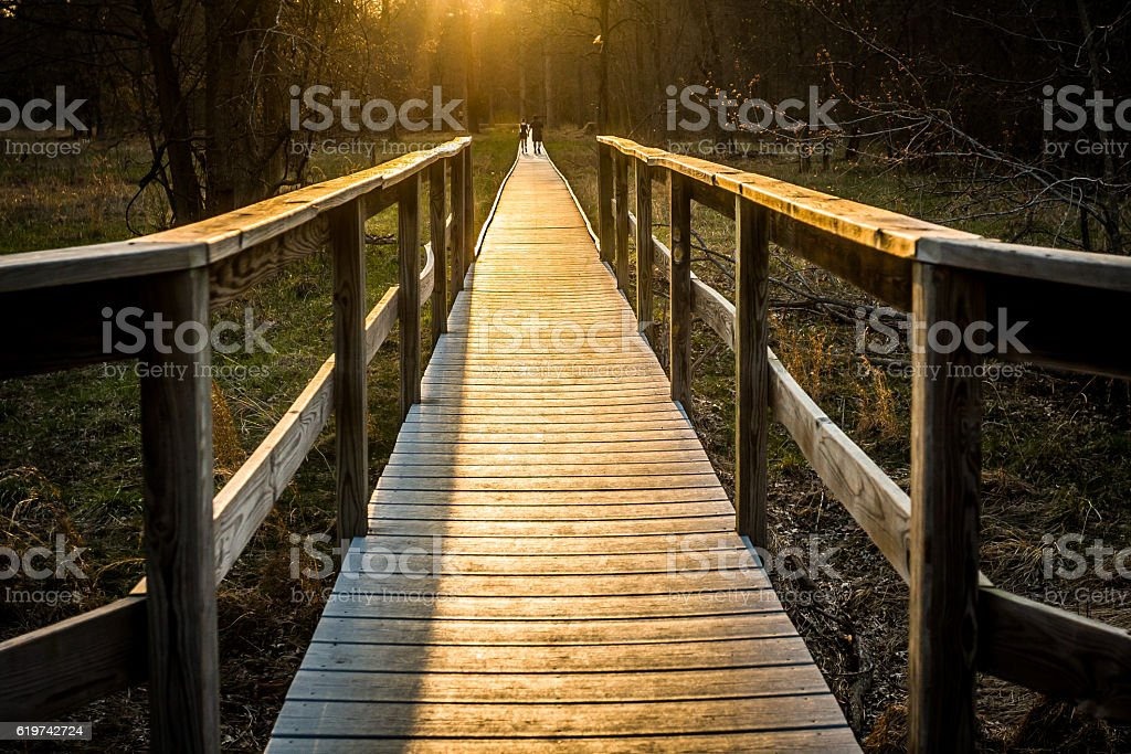 Wooden Boardwalk with Low Sun stock photo