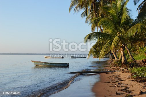 Sunrise on the surinam beach with a wooden boat in the water and green palm trees leaves