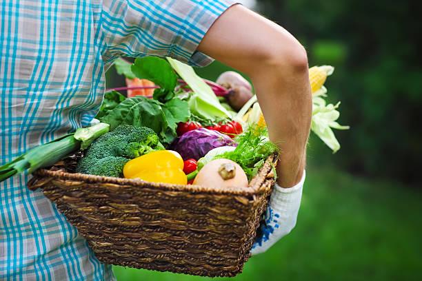 hölzerne box gefüllt frisches gemüse - hofladen stock-fotos und bilder