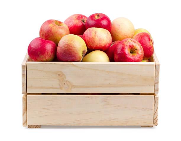 holzkiste voller frischer äpfel isoliert - holzkiste stock-fotos und bilder