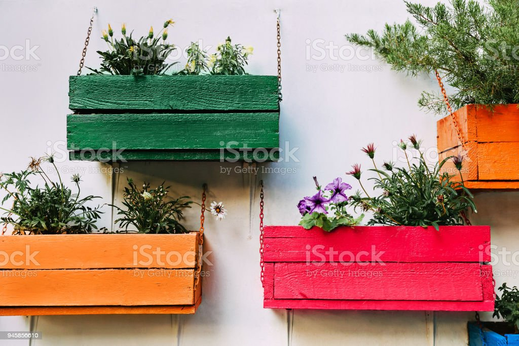 Multicolored wooden boxes with flowers hanging on the wall