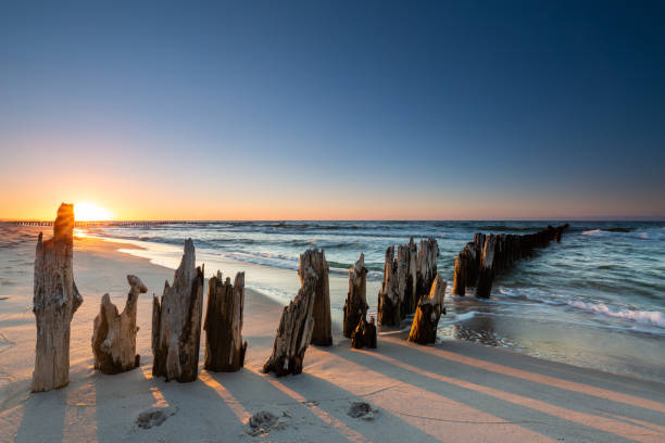 Wooden breakwater at sunset on the Baltic Sea stock photo