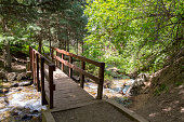An old wooden bridge spans a bubbling river in a mountain range in Utah. The scene is surrounded by trees and foliage.