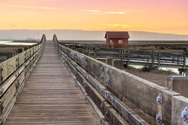 Wooden Bridge and Cabin Landscape Sunset at Don Edwards San Francisco Bay National Wildlife Refuge, Fremont, Alameda County, California, USA. san francisco bay stock pictures, royalty-free photos & images