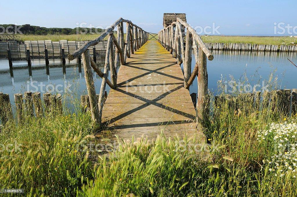 Wooden bridge at the bay royalty-free stock photo