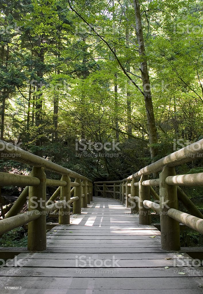 Wooden bridge in a park royalty-free stock photo