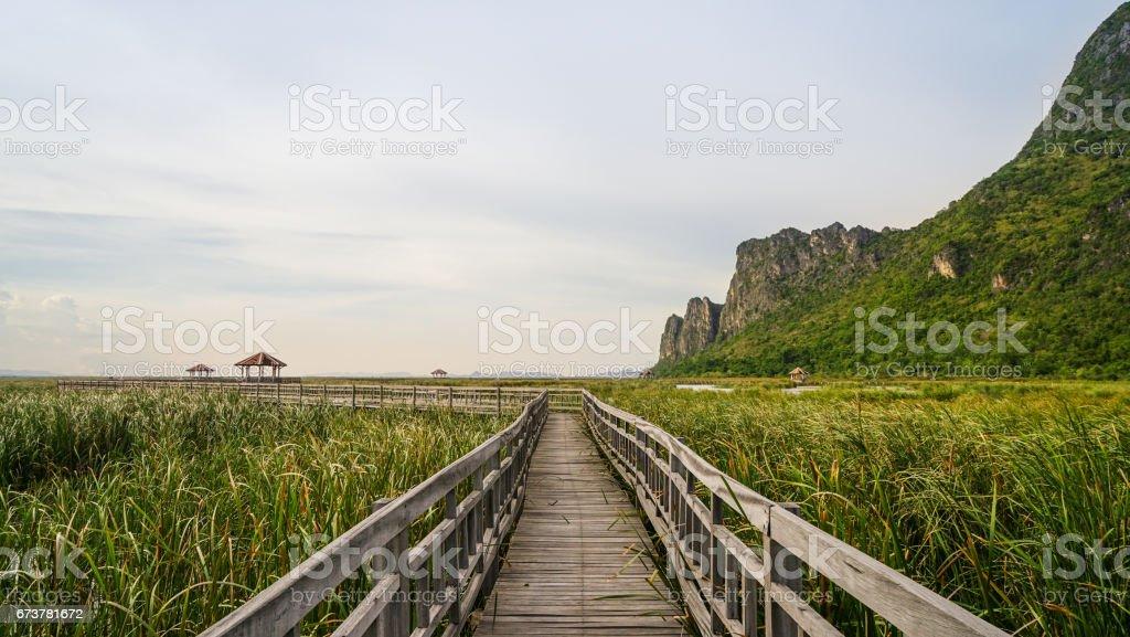 Pont de bois dans le lac, Parc National de Khao Sam Roi Yod photo libre de droits