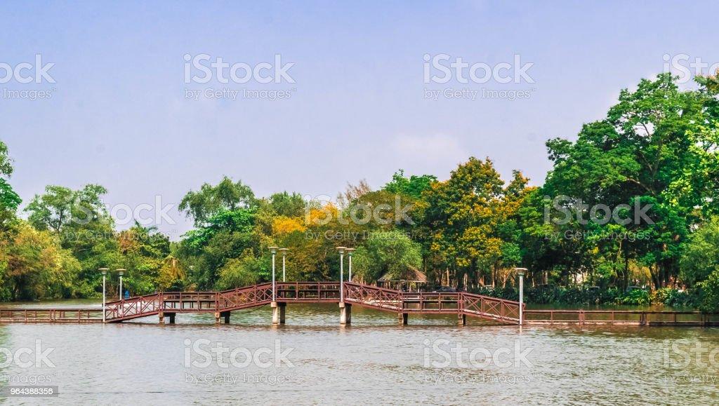 Een houten brug in het park over het meer. - Royalty-free Boom Stockfoto