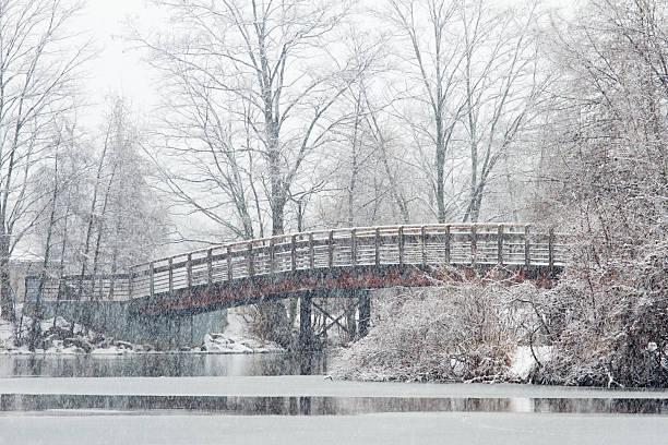 Wooden bridge in the snow