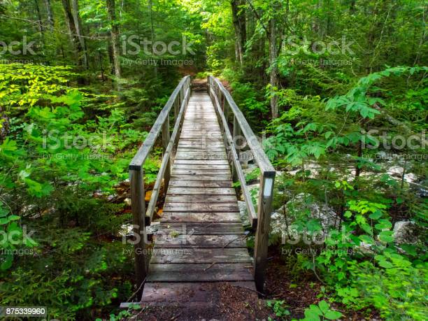 Photo of Wooden Bridge on Appalachian Trail in Green Mountains Vermont